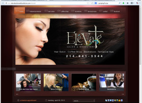 Elevate Salon Website
